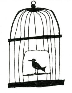 bird-in-cage
